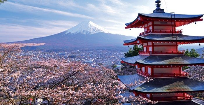 Circuit Japonia  Magia Naturii  & Coreea de Sud